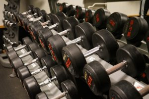 Dumbbells on Dumbbell Rack
