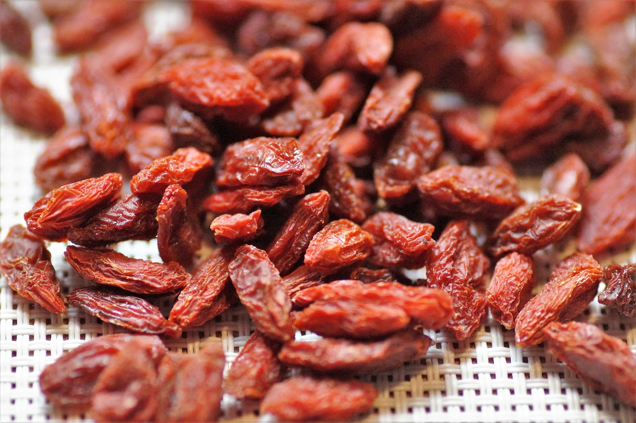 Goji Berries Health Benefits