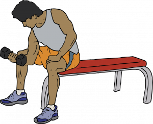 How to Choose a Weight Bench